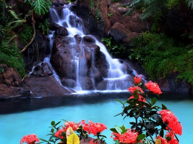 Luxurious Waterfall, Wallpaper, Backgrounds, Androlib