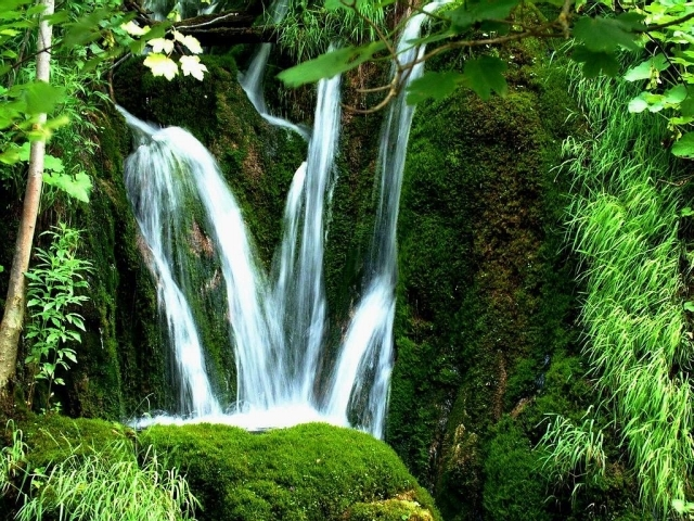 waterfalls wallpaper. waterfalls wallpaper. green
